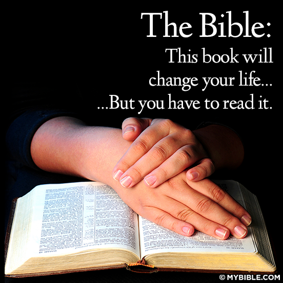 The Bible this book will change your life but you have to read it. picture