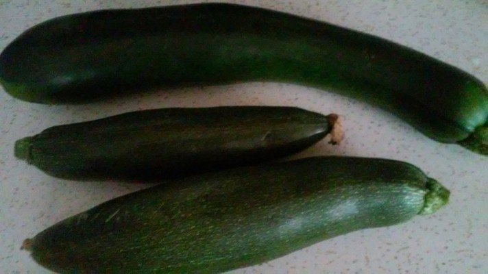 three of our zukinni squash